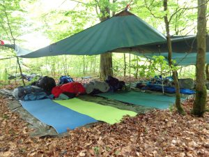 Lager im Wald