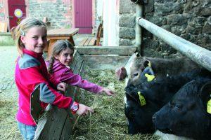 Zwei Mädchen füttern Kälbchen