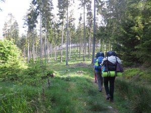 Mit Rucksäcken durch den Wald