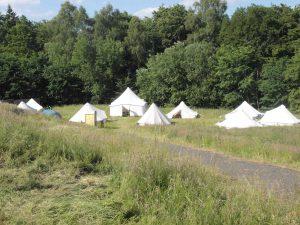Zelte auf einer Wiese vor Wald