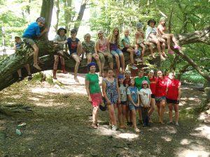 Gruppenfotos auf und unter einem Baum
