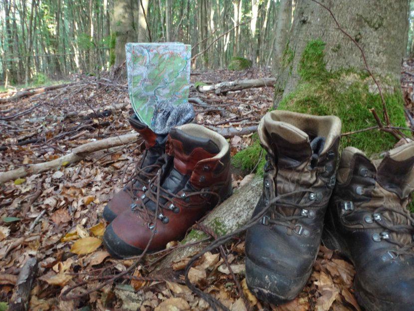 Wanderschuhe im Wald
