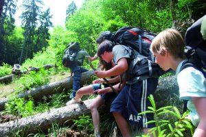 Auf Trekkingtour quer-Feld-ein über Baumstämme den Berg hinauf