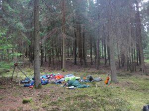 Matratzenlager im Wald, alle schlafen noch