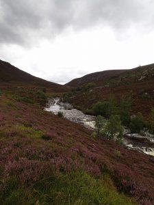 kleiner Fluss bzw. reißender Bach, in Tal rechts und links ros Heidekraut und Birken