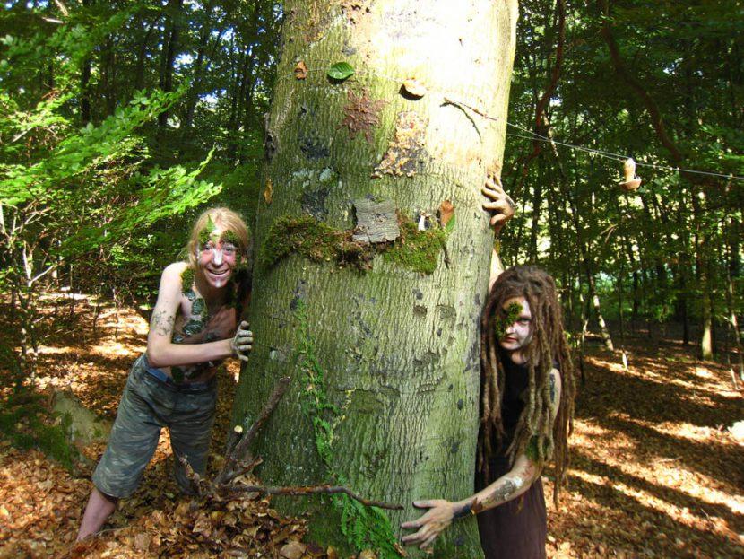 um einen Baum, verschmelzend mit dem Wald