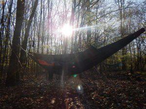 Hängematte im Wald, bei Sonnenschein