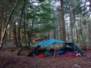 Tarp im Wald