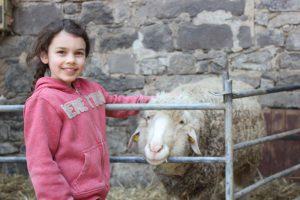 Ein junges braunhaariges Mädchen steht vor einem Gatter und streichelt ein dahinterstehendes Schaf. Sie lächelt dabei in die Kamera.
