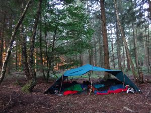 Das Bild zeigt ein Tarp im Wald während des Sonnenaufgangs.